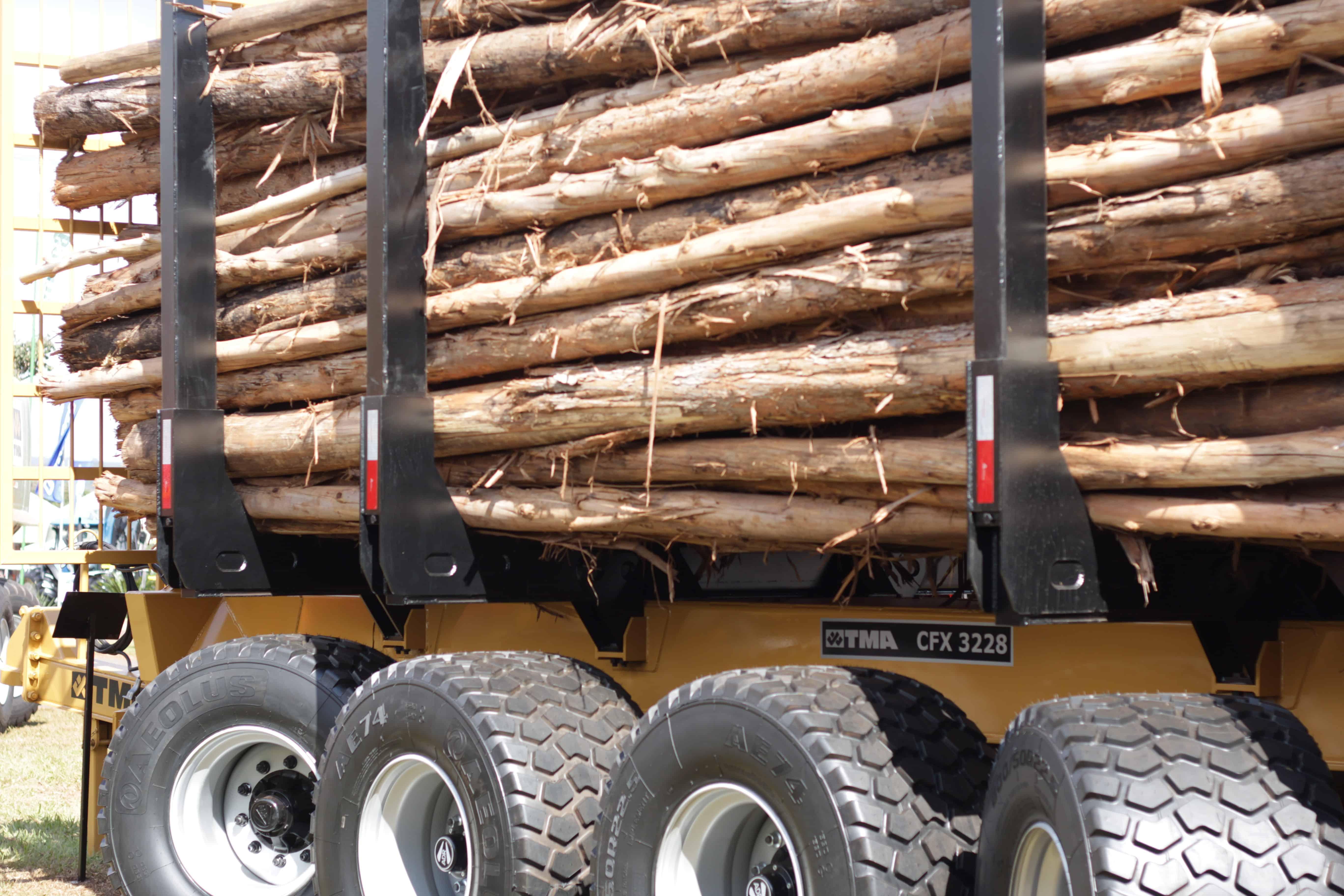 TMA entra no segmento de florestas plantadas