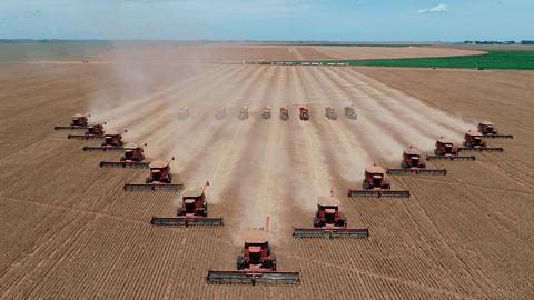 Colheita de grãos com Axial-Flow e VTG 2420