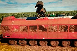Transbordo Canavieiro: qual a sua importância para o produtor rural?