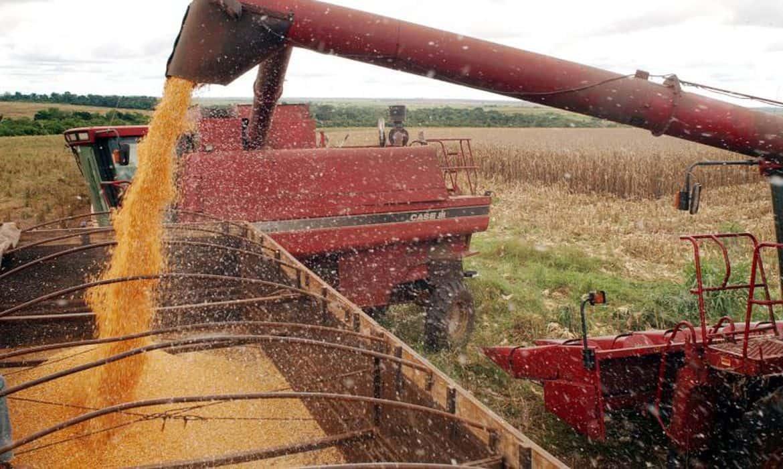 Anúncio do Plano Safra 2020/21 será no dia 15 de junho, diz Canal Rural