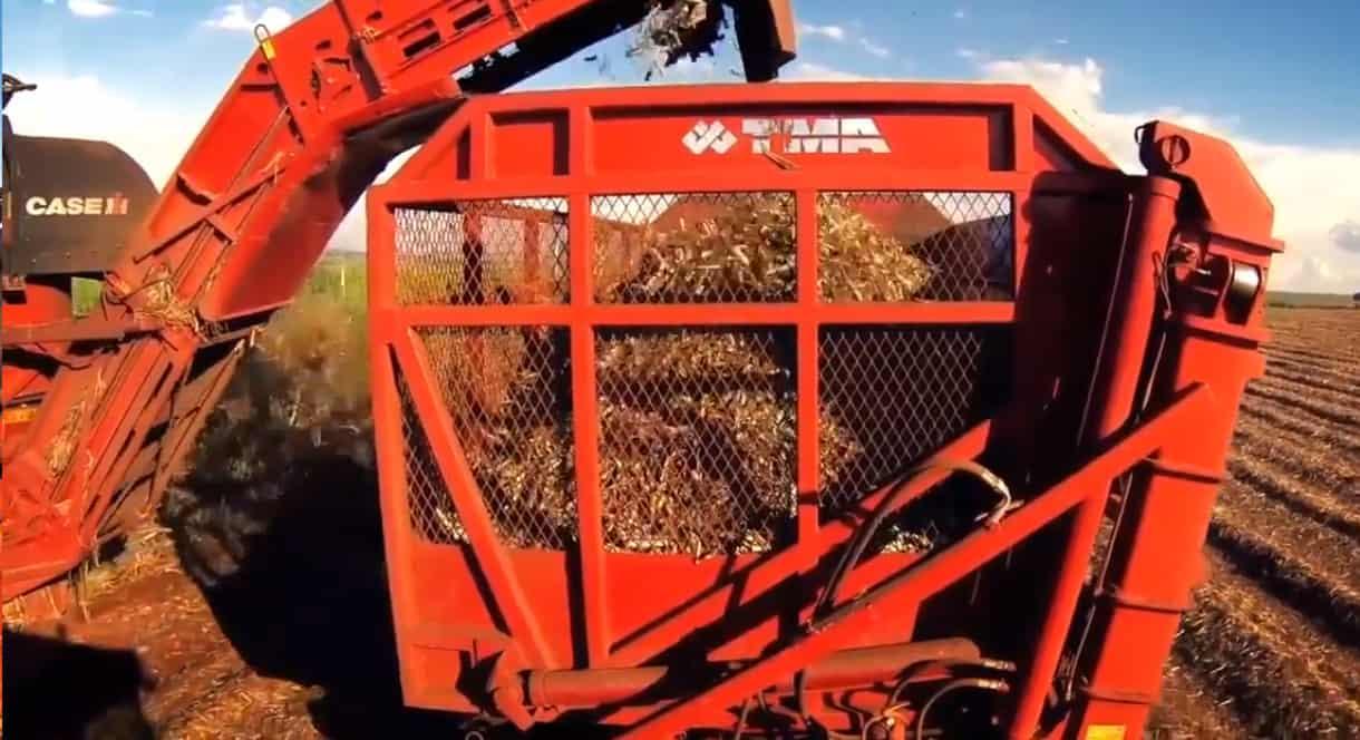 Ritmo acelerado da colheita leva usinas a encerrarem precocemente a safra canavieira 2020/21